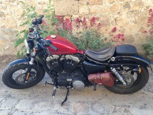 Sacoches Myleatherbikes Harley Sportster Forty Eight (53)